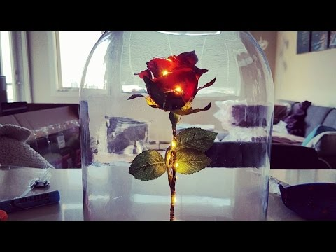DIY Enchanted Rose from Beauty and The Beast!