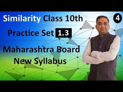 Similarity Class 10th Maharashtra Board New Syllabus Part 4 | Practice Set 1.3