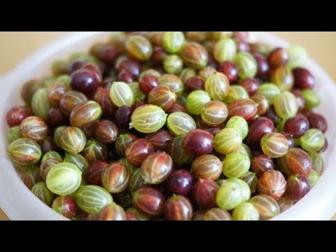 How To Make Delicious Frozen Gooseberry Jam - DIY Food & Drinks Tutorial - Guidecentral
