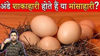 Egg Veg or Non Veg 25 Most Amazing and Interesting Random Fun Facts in Hindi  TFS EP 06 Hindi