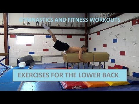 EXERCISES FOR THE LOWER BACK - Gymnastics and Fitness Workouts