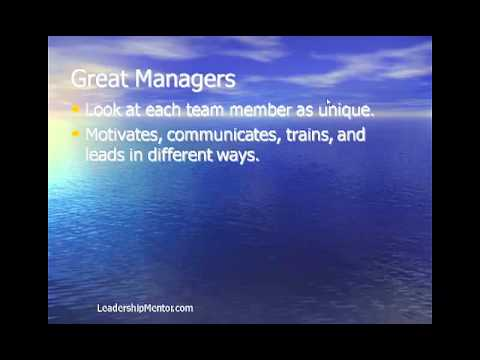 Leading Team Members More Effectively