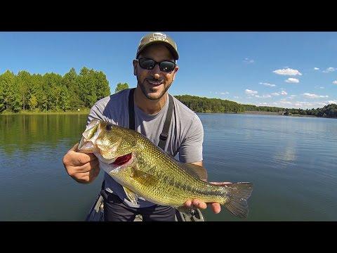 BASS FISHING (HOW I LOCATE BASS ON DEEP WEEDLINES USING SONAR!) DROP SHOT