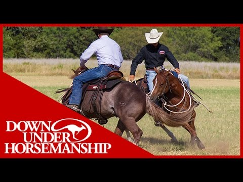 Clinton Anderson: How to Fix a Buddy-Sour Horse - Downunder Horsemanship