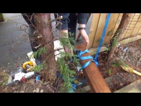 Remove Fence Post Stump