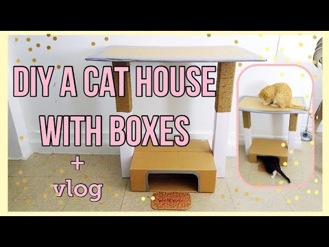 Diy a cat house with boxes !