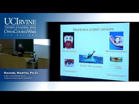 Molecular Structure & Statistical Mechanics 131B. Lecture 12. Electronic Spectroscopy.