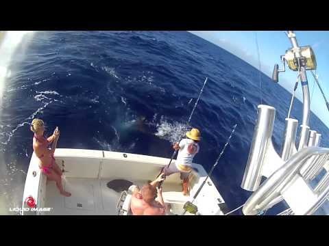 Start Me Up Fishing Charters Using The Ego 727 Off The Shore's Of Maui