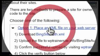 Bing Webmaster Tool Box Site Verification