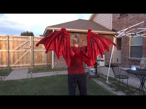 Nemmy Dragon Wing test
