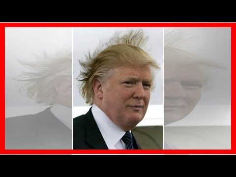 Donald Trump's hair blowing in the wind is raising more than just eyebrows
