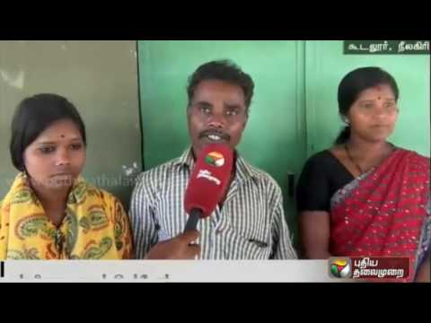 Govt School for Adivasi students in Nilgris district records straight 4th year as 100% pass