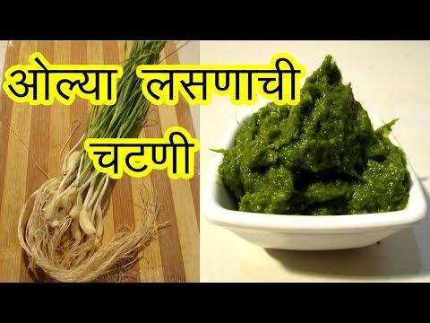 ओल्या लसणाची चटणी | olya lasanachi chutney recipe in marathi | garlic chutney by mangal
