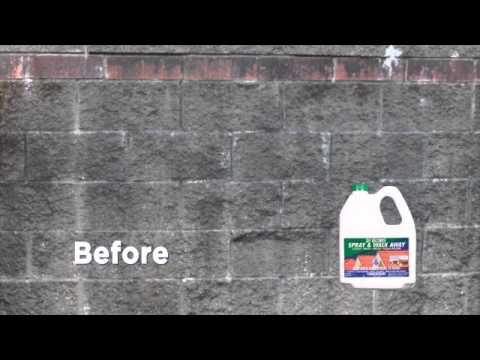 30 SECONDS Spray & Walk Away, the Lichen, Moss, Mold & Algae KILLER