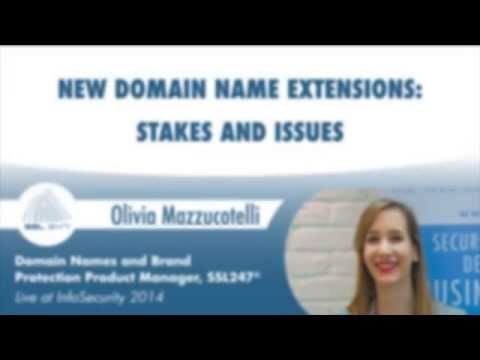 New Domain Name Extensions from SSL247®: Stakes and Issues