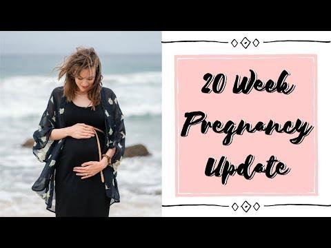 20 WEEK PREGNANCY VLOG (I Felt the Baby move!)