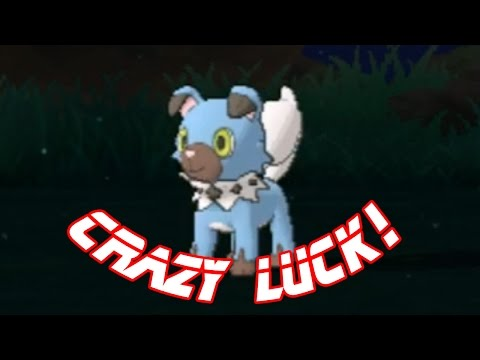 LIVE (SuMo): Shiny Rockruff after 10 SOS encounters