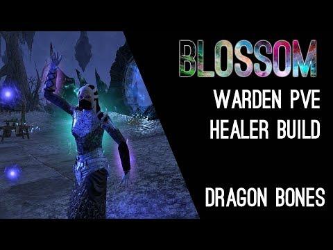 Magicka Warden Healer Build PvE