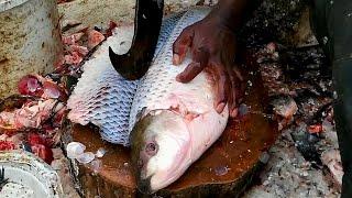 Amazing Cutting Fish   Fastest Rohu Fish Cutting   Big Carp Clean And Fillet Videos