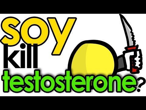 Does SOY Lower TESTOSTERONE?