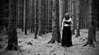 missing body found in woods (Short film)