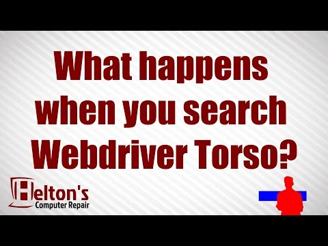 What happens when you search Webdriver Torso?