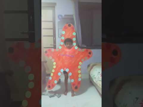 fancy dress starfish