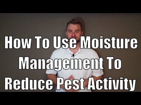 How to use moisture management to reduce pest activity