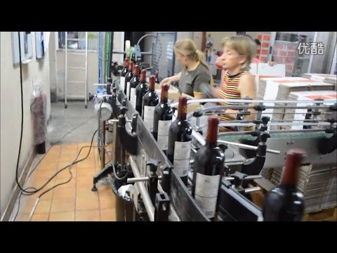 Glass Bottle Red Wine Filling Capping (Corking) Labeling Machine and Making Production Lline