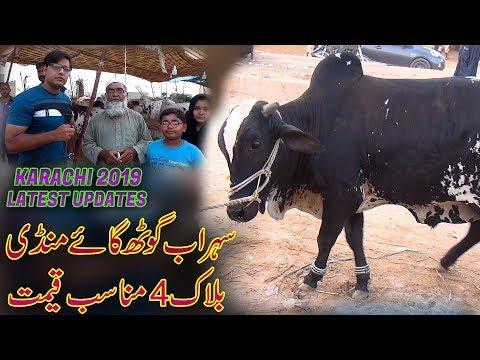 BEAUTY BULL QURBANI | COW MANDI PAKISTAN | FAISALABAD BAKRA