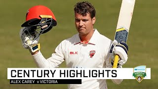 Alex Carey sizzles in quick-fire Shield century