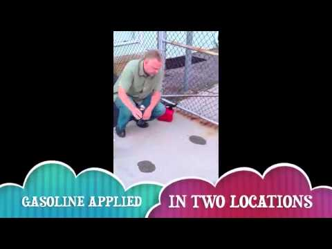 How to Remove oil from cement