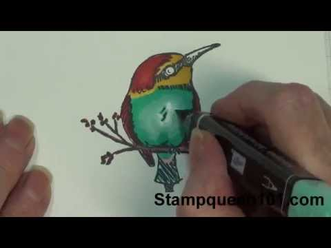Blendabilities My Way- Bird