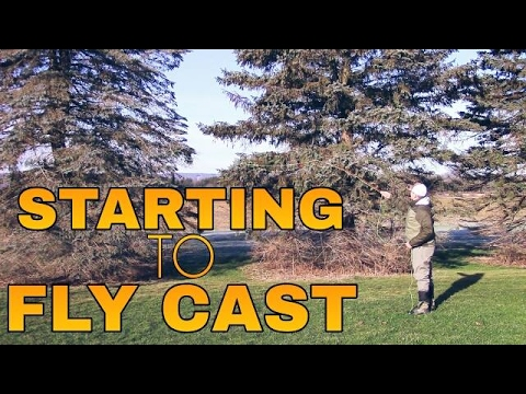 How To Cast a Fly Rod 101 -  First Steps in Casting a Fly Fishing Rod for Beginners Ep.1