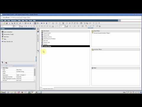 IBM Cognos 10 Reposrt Studio Data Items