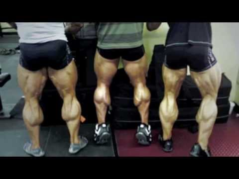 WORKOUT FOR RIPPED LEGS