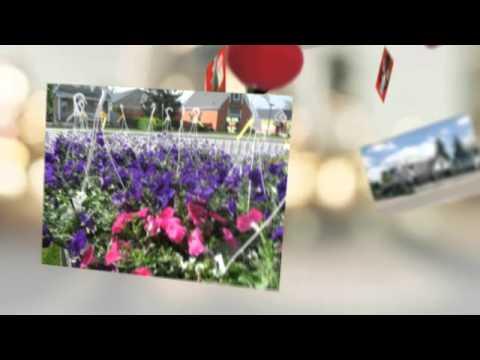 london flower shops