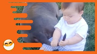 Cutest Babies of the Day! [20 Minutes] PT 16 | Funny Awesome Video | Nette Baby Momente