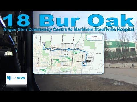 18 Bur Oak - YRT 2011 NFI D40LFR 1118 (Angus Glen Community Ctr to Markham Stouffville Hospital)