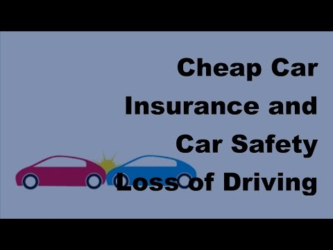 Cheap Car Insurance and Car Safety |  Loss of Driving Licence -  2017 Vehicle Insurance Policy