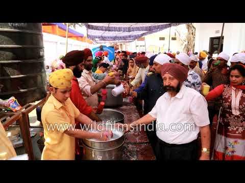 Food and water for free at a Gurdwara in Majnu ka Tilla, Delhi