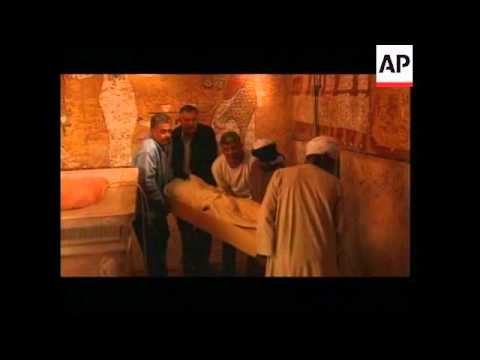 Interview with head of Archaeology Institute about Tut cat scan