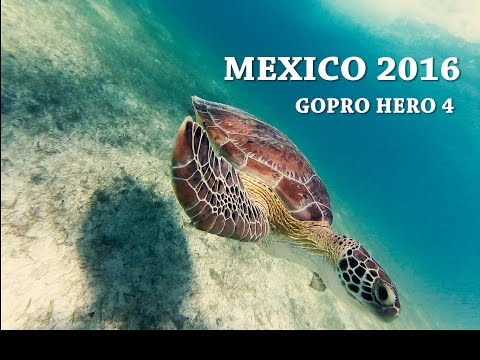 Mexico 2016  ✩ GoPro HERO4 Session ✩ Cancun, Xel-Há, Cozumel, Tulum and Isla Mujeres