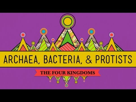 Old & Odd: Archaea, Bacteria & Protists - CrashCourse Biology #35