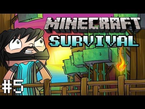Minecraft: Survival - Ep. 5 - Mining & More Building