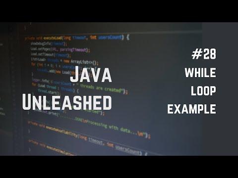#28 Java While Loop Example