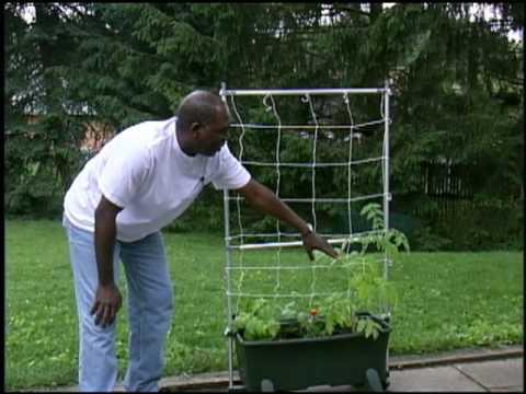 Grow a Portable Garden With an EarthBox