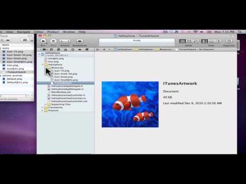 Part 5.1 -- Adding Icons to iPad App (HD)