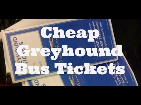 5 Ways to Get Cheap Greyhound Bus Tickets