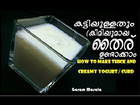 How to make Thick and Creamy Yogurt / Curd കട്ടിയുള്ളതും (കീമിയുമായ തൈര് ഉണ്ടാക്കാം